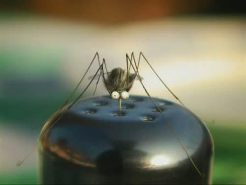 Истории из жизни насекомых 4